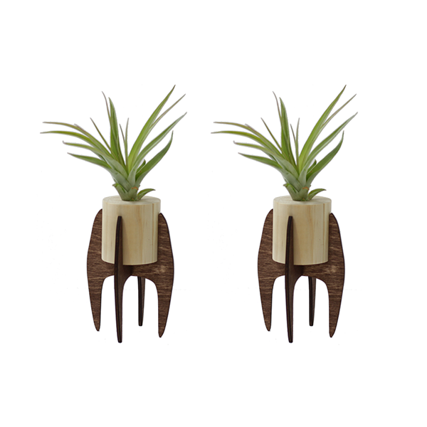 Mini Air Plant Stands Image 1