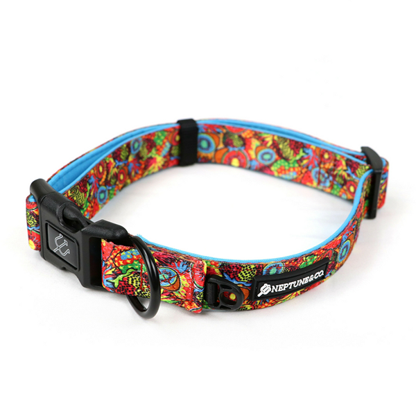 Dog Collar Image 1
