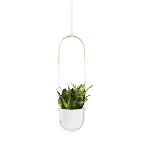 Bolo Hanging Planter Image 1