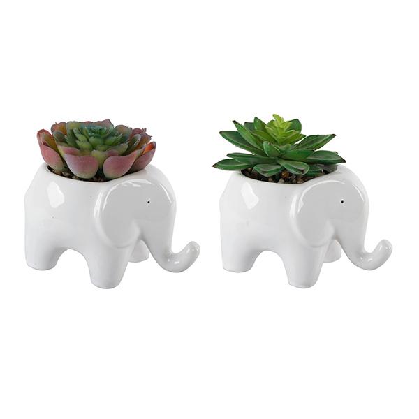 Elephant Planters (Set of 2) Image 1